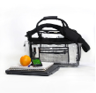 Clear Briefcase / Laptop Bag